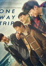 One Way Trip online (2016) Español latino descargar pelicula completa