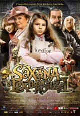 Saxana: La pequeña bruja y el libro encantado online (2011) Español latino descargar pelicula completa