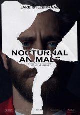 Animales nocturnos online (2016) Español latino descargar pelicula completa