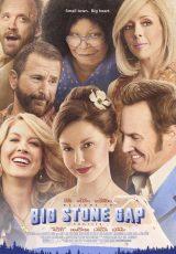 Big Stone Gap online (2014) Español latino descargar pelicula completa