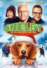 Shelby online (2014) Español latino descargar pelicula completa