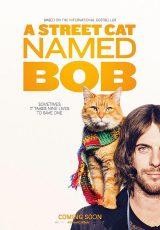 A Street Cat Named Bob online (2016) Español latino descargar pelicula completa