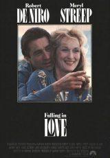 Falling in Love online (1984) Español latino descargar pelicula completa