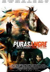 Purasangre online (2016) Español latino descargar pelicula completa