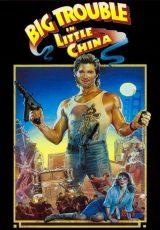 Masacre en el Barrio Chino online (1996) Español latino descargar pelicula completa