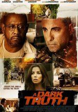 A Dark Truth online (2012) Español latino descargar pelicula completa