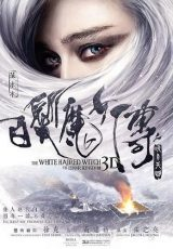 The White Haired Witch of Lunar Kingdom online (2014) Español latino descargar pelicula completa