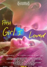 First Girl I Loved online (2016) Español latino descargar pelicula completa