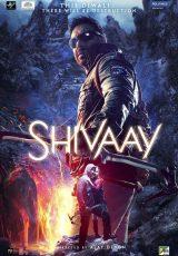 Shivaay online (2016) Español latino descargar pelicula completa