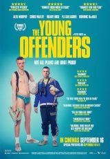 The Young Offenders online (2016) Español latino descargar pelicula completa
