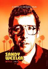 Sandy Wexler online (2013) Español latino descargar pelicula completa