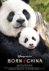Nacidos en China online (2016) Español latino descargar pelicula completa