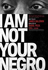 No soy tu negro online (2016) Español latino descargar pelicula completa