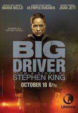 Big Driver online (2014) Español latino descargar pelicula completa