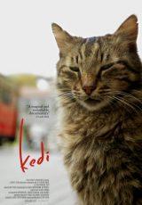 Kedi online (2016) Español latino descargar pelicula completa