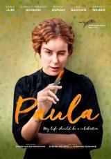 Paula online (2016) Español latino descargar pelicula completa
