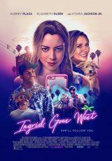 Ingrid Goes West online (2017) Español latino descargar pelicula completa