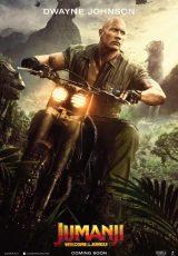 Jumanji 2 En la selva online (2017) Español latino descargar pelicula completa