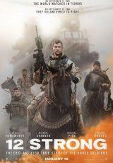 Tropa de héroes online (2018) Español latino descargar pelicula completa
