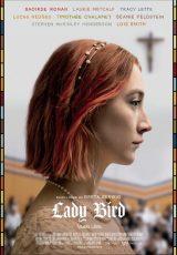 Lady Bird online (2017) Español latino descargar pelicula completa