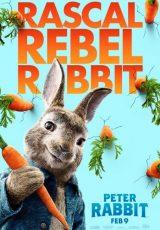 Peter Rabbit online (2018) Español latino descargar pelicula completa