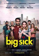 The Big Sick online (2017) Español latino descargar pelicula completa