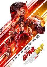 Ant-Man 2 online (2018) Español latino descargar pelicula completa