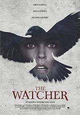 El misterio de la casa del cuervo online (2016) Español latino descargar pelicula completa