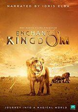 Enchanted Kingdom 3D online (2014) Español latino descargar pelicula completa