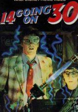 De 14 a 30 años en 15 segundos online (1988) Español latino descargar pelicula completa