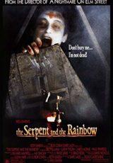 La serpiente y el arcoiris online (1988) Español latino descargar pelicula completa