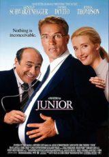 Junior online (1994) Español latino descargar pelicula completa