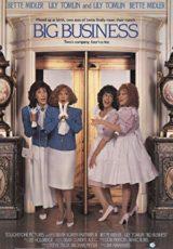 Sopa de gemelas online (1988) Español latino descargar pelicula completa