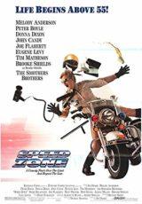 Carrera de locos 3 online (1988) Español latino descargar pelicula completa