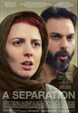 Una separación online (2011) Español latino descargar pelicula completa