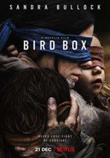 Bird Box online (2018) Español latino descargar pelicula completa