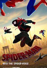 Spider-Man: Un nuevo universo online (2018) Español latino descargar pelicula completa