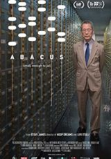 Abacus Small Enough to Jail online (2017) Español latino descargar pelicula completa