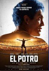 El Potro: Lo mejor del amor online (2018) Español latino descargar pelicula completa