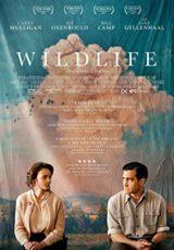 Wildlife online (2018) Español latino descargar pelicula completa